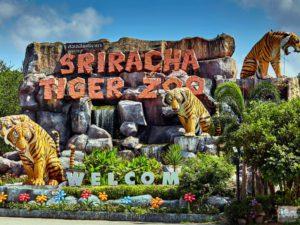 ttl-srircacha-tiger-zoo-01