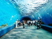 ttl-bangkok-ocean-05